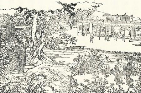 百花園の秋草